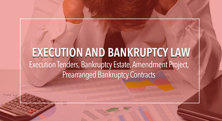 execution-and-bankruptcy-law
